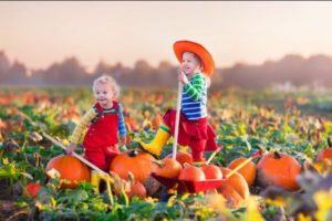 12 Fun Fall Family Activities