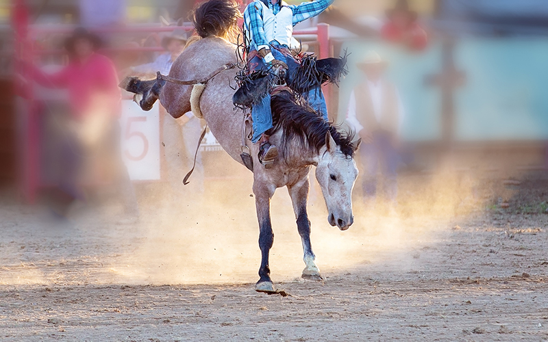 Cowboys Who Care Ranch Rodeo